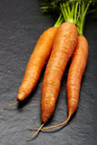 Carrots with green Stock Images