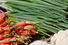 Carrots and Green Onions Stock Image