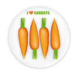 Carrots illustration. Illustration of row of carrots on white plate Stock Image