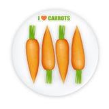 Carrots illustration. Illustration of row of carrots on white plate Vector Illustration