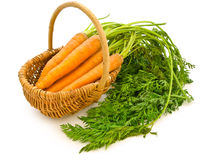 Free Carrots In A Basket Royalty Free Stock Image - 10402236