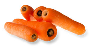 Carrots isolated Royalty Free Stock Images