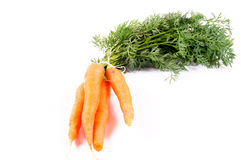 Carrots isolated Stock Photos