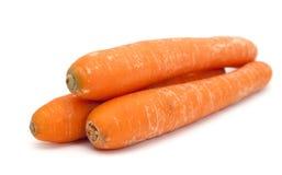 Carrots isolated. Three carrots isolated on white royalty free stock photo