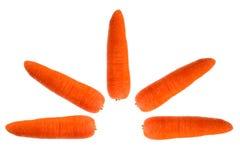 Carrots isolated on white background. Fresh carrots isolated on white background royalty free stock photo
