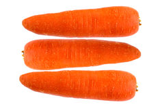 Carrots isolated on white background. Fresh carrots isolated on white background Royalty Free Stock Photography