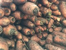 Carrots in large quantities in the store abstract background stock images