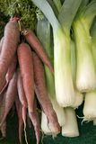 Carrots and leek Stock Image