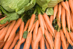 Carrots and lettuce royalty free stock photography