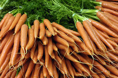 Carrots at the market Royalty Free Stock Photography