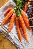 Carrots Stock Photos