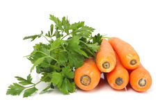 Carrots and parsley Stock Photo
