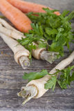 Carrots and parsley Stock Images