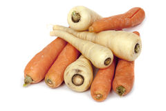 Carrots and Parsnips  Stock Photography