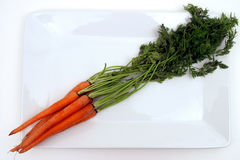 Carrots on plate. A bunch of carrots with greens on a white platter Stock Images