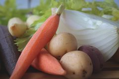 Close up of fresh vegetables for soup. Carrots, potatoes, onions, and celery - perfect and ready for fresh, healthy soup Royalty Free Stock Photography
