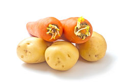 Carrots potatoes Royalty Free Stock Photography