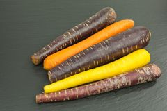 Purple, orange and yellow carrots. Carrots in purple, orange and yellow - purple carrots are especially high in anthocyanin stock images
