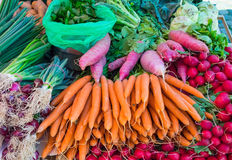 Carrots, radish and herbage. For sale at a market Stock Photo