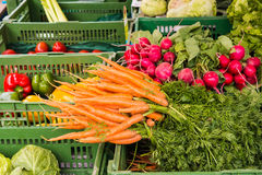 Carrots, radish and other vegetables for sale on a market. Carrots, radish and other fresh ripe vegetables for sale on a market Stock Photography