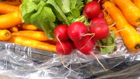 Carrots and radishes on display Royalty Free Stock Images