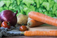 Carrots, red union and tomatoes, against green background royalty free stock image