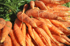 Carrots for sale Royalty Free Stock Image