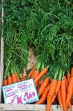 Carrots for sale. Stock Photo