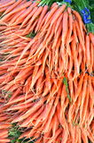 Carrots at San Francisco Farmers Market Stock Photography