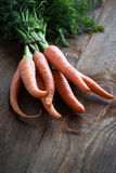 Carrots. Some fresh carrots at the wooden table Royalty Free Stock Image