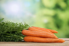 Carrots in summer with copyspace Royalty Free Stock Images