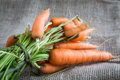Carrots on table background and fabric sack Royalty Free Stock Photography