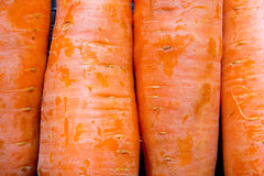 Carrots texture Royalty Free Stock Images