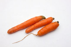 Carrots. Three carrot on a white background Royalty Free Stock Photo