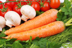 The carrots and tomatoes and other vegetables Royalty Free Stock Images