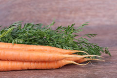 Carrots with tops Stock Photo