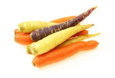 Carrots of various colors in a white background Royalty Free Stock Photos