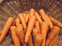 Carrots in the vegetable basket. stock photography