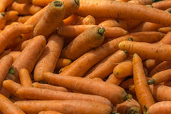 Carrots In Vegetable Market Display Royalty Free Stock Images