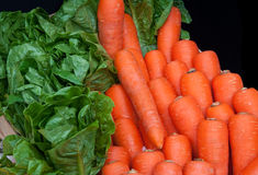 Carrots and vegetables Stock Image