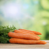 Carrots vegetables in summer Royalty Free Stock Photo