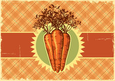 Carrots.Vintage label background for design Royalty Free Stock Images