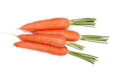 The carrots on a white Royalty Free Stock Image