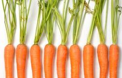 Carrots on White Stock Photos