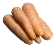 Carrots in white back Stock Images
