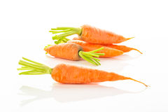 Carrots in white background Royalty Free Stock Photography