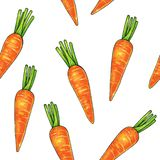 Carrots on a white background. Color drawing markers. Agricultural vegetable. Seamless pattern.  vector illustration