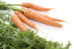 Carrots on White background 005. Produce sourced from farm Stock Images
