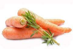 Carrots  on white background Stock Image