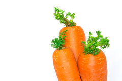 Carrots on a white fabric background. Carrots isolated on a white fabric background Royalty Free Stock Photography